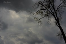 stormy clouds 1000 021