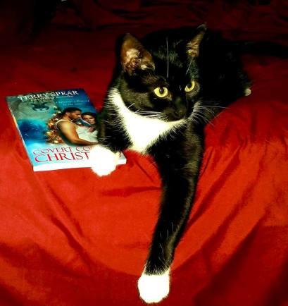 Lola Faber's Ms. Cassie Tuxedo Cat