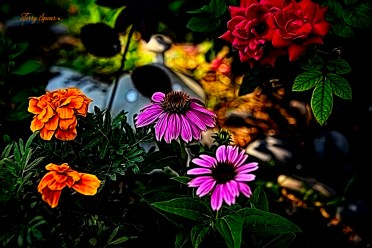 fairy garden smudge 1000 001
