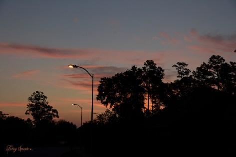 sunrise 1000 006