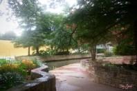 Riverwalk pink crape myrtle 1000 San Antonio 120
