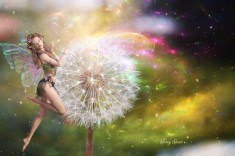 Rowena's dandelion with fairy