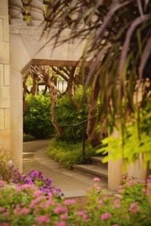 arboretum garden path 1000 824