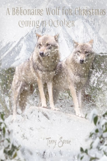 Billionaire wolf Christmas wolves in mountains ad 1000