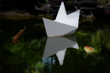 Paper hat floating with dragonfly and koi 6000 Minnesota 4736