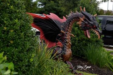 red dragon orginal 1000 009
