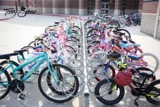 bikes 1000 041