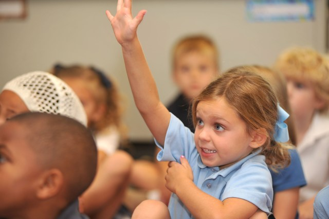 Image result for raised hand question