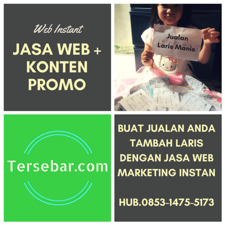 jasa-pembuatan-wesite-marketing-plus-konten-jualan-seo-friendly