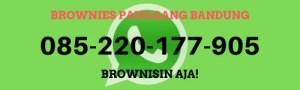 kontak-wa-whatsapp-toko-jual-brownies-bandung