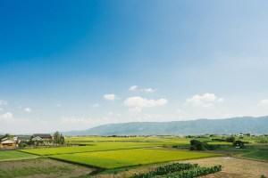 ふるさと納税をしたくなるような田園風景
