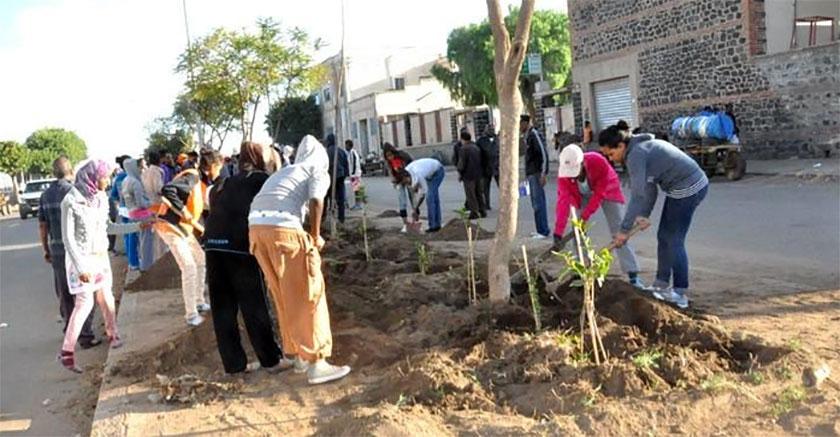 Eritrean student summer work program
