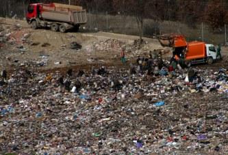 Plehrat e Kosovës, Gjermania në ndihmë