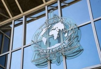 """Lista: shtetet që votuan kundër Kosovës në Interpol, një """"hakmarrje"""" dhe nga Bosnja"""