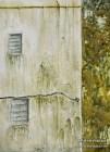"""Weathered Mumbai Wall"". 12×9. Watercolor on paper."