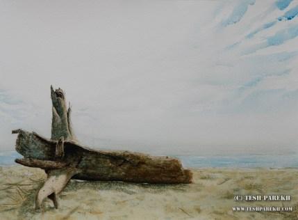Driftwood. 21x29. Drybrush watercolor on paper. Artist - Tesh Parekh