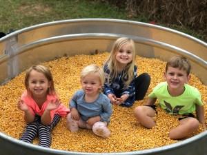 corn pits