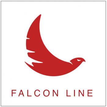 Falcon Line Icon