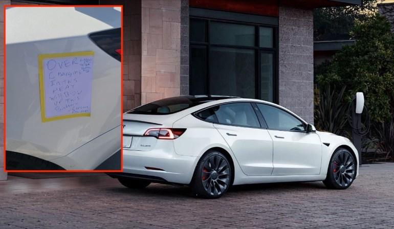 Tesla Model 3 отключили от сети «обеспокоенный житель» из-за опасений «взорвать аккумулятор»