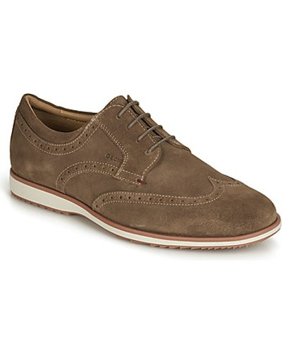 Geox  BLAINEY  men's Casual Shoes in Brown