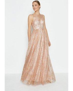 Coast Embellished Tulle Skirt Maxi Dress -, Pink
