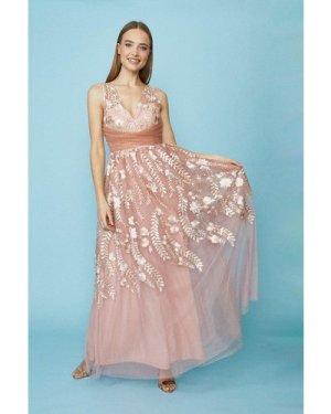 Coast Embellished Leaf Tulle Maxi Dress -, Pink