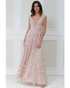 Goddiva 3D Flower Mesh Maxi Dress - Blush