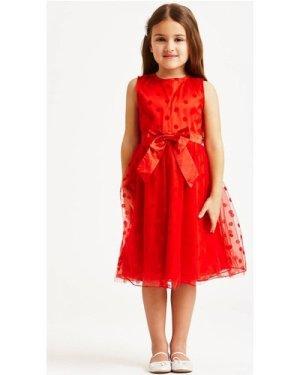 Little MisDress Red Polka Dot Mesh Dress size: 11-12 Yrs, colour: Red