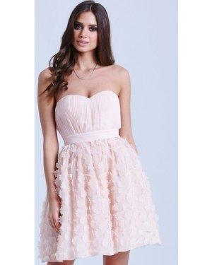 Little Mistress Nude Floral Applique Prom Dress size: 10 UK, colour: N