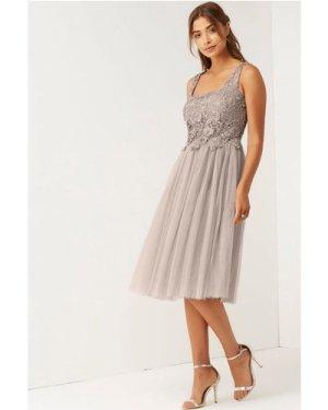 Little Mistress Mink Lace and Mesh Prom Dress size: 16 UK, colour: Min