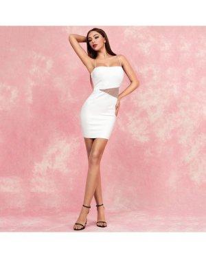 Lucra Mesh Insert Bodycon Dress