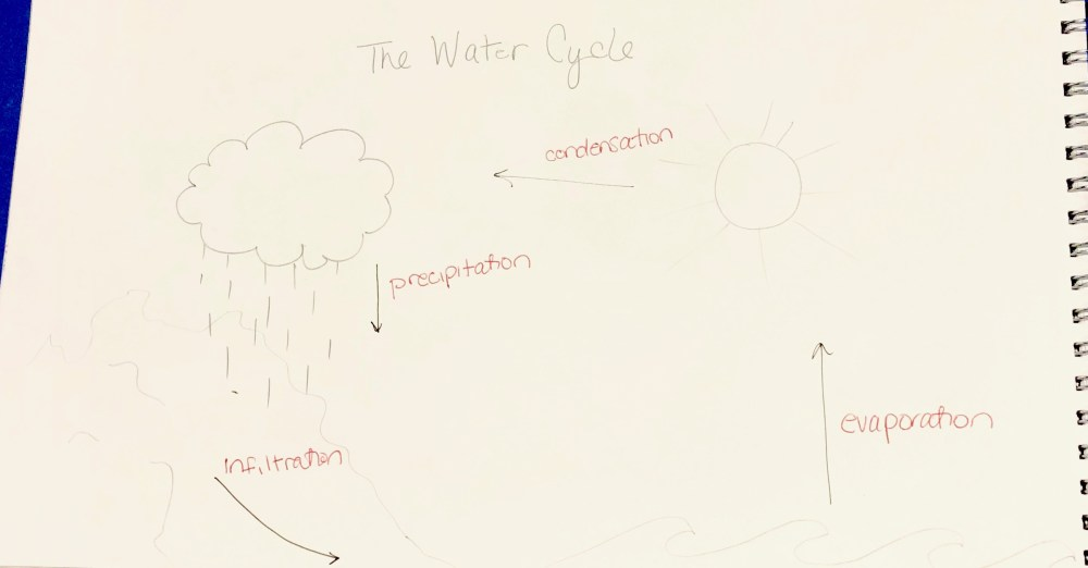 medium resolution of for my explanation graphic i decided to focus on the water cycle or how water evaporates from the surfaces on earth rises into the atmosphere
