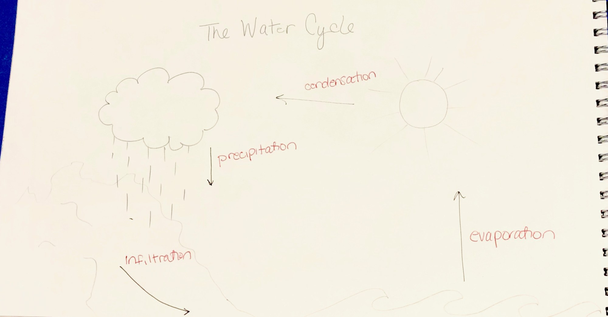 hight resolution of for my explanation graphic i decided to focus on the water cycle or how water evaporates from the surfaces on earth rises into the atmosphere