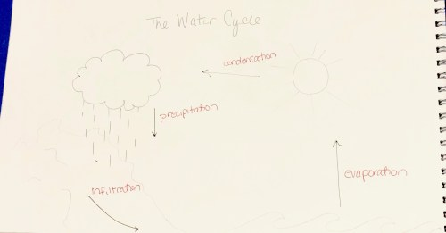 small resolution of for my explanation graphic i decided to focus on the water cycle or how water evaporates from the surfaces on earth rises into the atmosphere