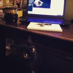 One of my studio assistants