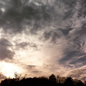 Sun, clouds, trees