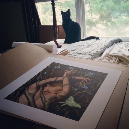 Drusilla inspecting canvas prints