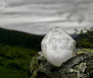 Tess Whitehurst - Unicorn Crystals