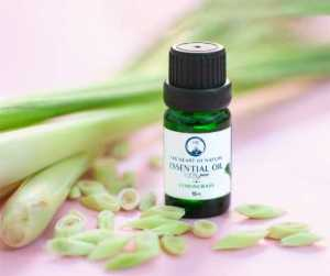Space Clearing Energy Clearing Astrology Lemongrass