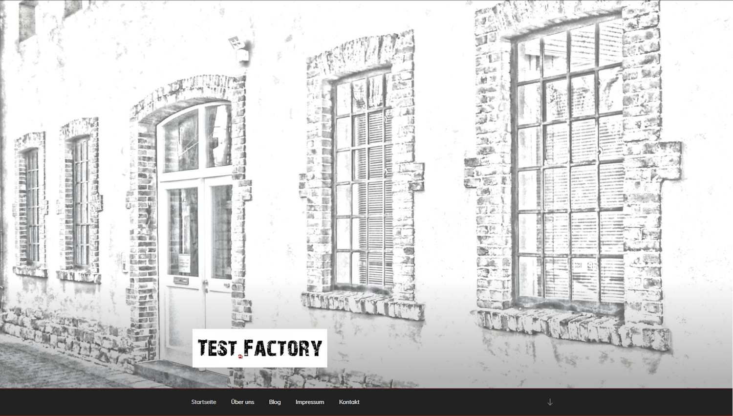 test.factory goes online