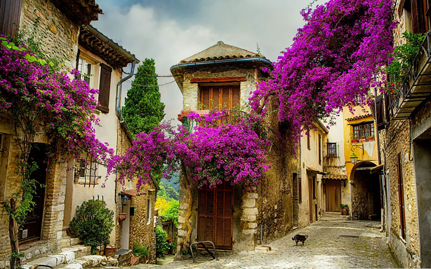 #1 Small Town In Provence, France