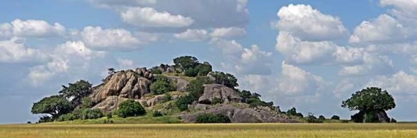 Fotoreise_Fotosafari_Fotoworkshop_Benny-Rebel_Afrika_Tansania_033_Serengeti