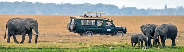 Fotoreise_Foto-Safari_Kenia_Lake_Amboseli_DSC9180