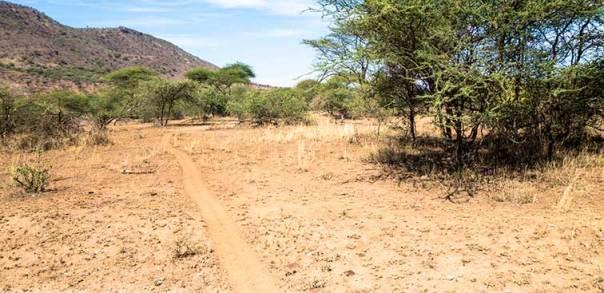 Fotoreise_Fotosafari_Tansania_Afrika_047