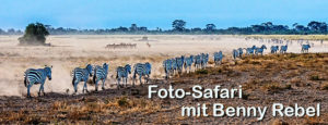 Fotoreise-Fotosafari-Fotoworkshop-Kenia-Afrika