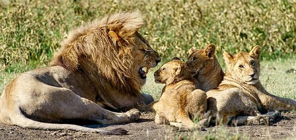 Fotoreise_Fotosafari_Afrika_Tansania_Benny_Rebel_DSC0496