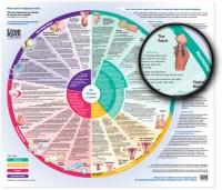 contact | Birth-Control-Comparison.info