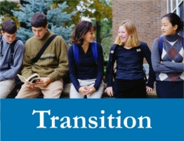 Transition Web Icon