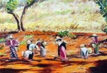 Paysans aux champs ( Birmanie )