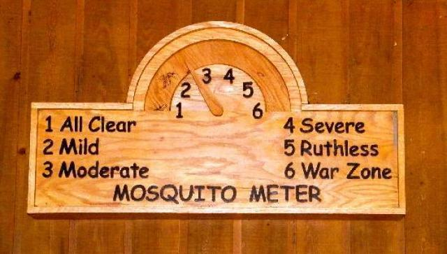 b7904-congaree-national-park2bmosquito2bmeter Congaree National Park - The Park That Is Not A Swamp